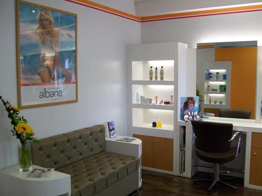 Coiffeur tassin salon camille albane for Salon de coiffure camille albane