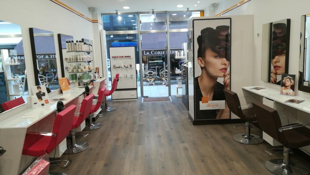 Coiffeur vichy salon camille albane for Salon de coiffure camille albane