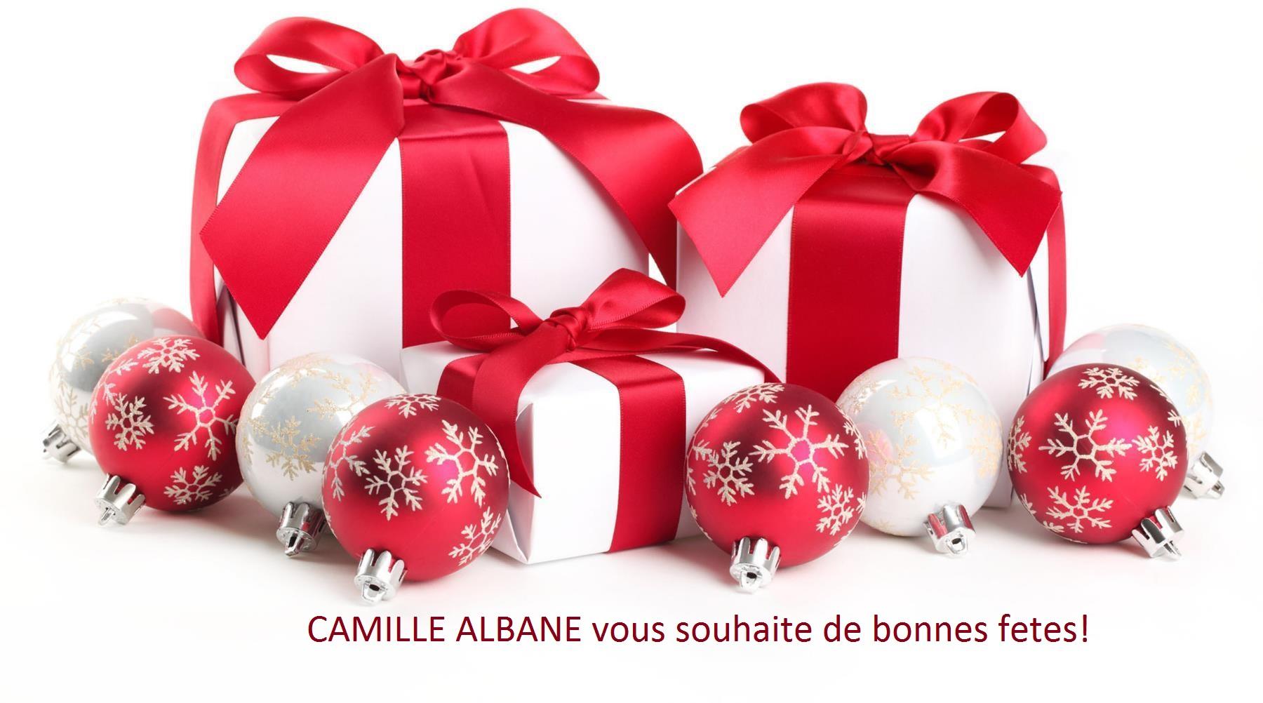 Camille Albane Vienne : Coiffeur Noel